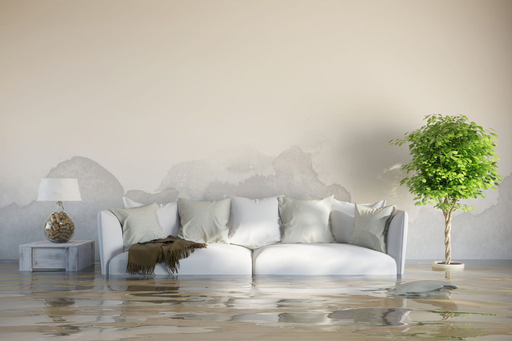 flood recovery services