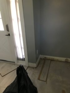 Mold Remediation Job in Wellington FL