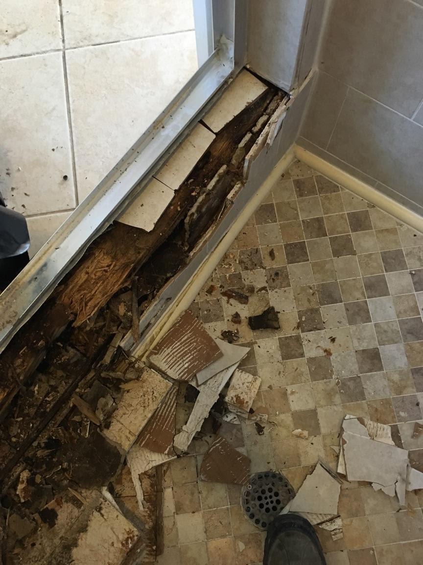 Boynton Beach Bathroom Mold Damage Repair Mold Remediation Boca Raton