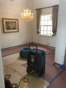 Fort Lauderdale Mold Removal